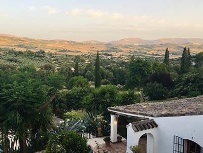 Spaanse wijn uit Pinoso